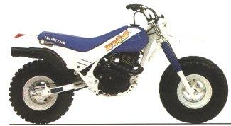 1986 Honda TR200'86 Fatcat